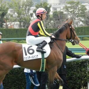 年度代表馬はジェンティルドンナ
