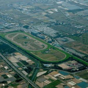 コース的に日本一の競馬場といえば