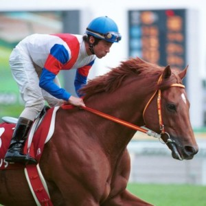 1000m以上差があるレースを連勝した馬はいない。