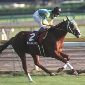 サイレンススズカより強い馬