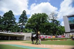 夏競馬の楽しみ方って?