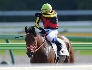 ダービー馬が海外遠征するのに競馬ファンすらスルー