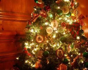 クリスマス強すぎワロタwwwwwwww