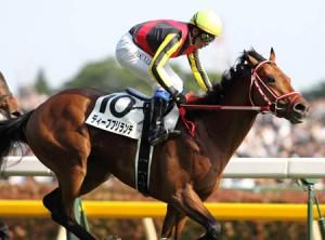 ディープブリランテ「ダービー以上のデキ」 岩田康誠騎手は意欲満々 キングジョージ6世&クイーンエリザベスS