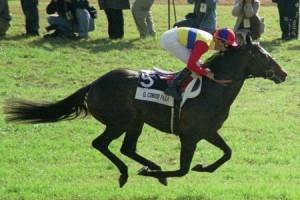 で、日本歴代最強馬て何なの?