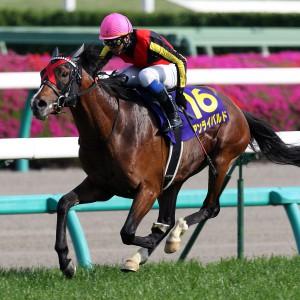 弱いと評判のGⅠ馬を全力で擁護するスレ