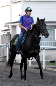 札幌2歳S 好位追走コディーノ(横山典)後続を寄せ付けず新馬・重賞連勝!