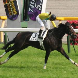 日本はもっと馬名を冠したレースを作るべき