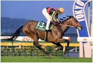 ディープブリランテ引退、種牡馬入りへ