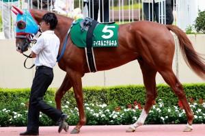 和田さん、英国ダービー馬をポイ捨て