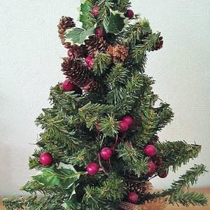クリスマスひっそりと好走