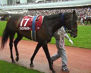 エルコンドルパサーはなんで年度代表馬になれたの?