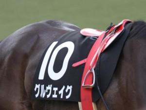 6/17 第17回マーメイドステークス(GIII) ハンデ