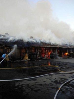 mnewsplus 1597639218 102 300x400 - 栗東トレセン火災「原因は特定できず」JRAが発表