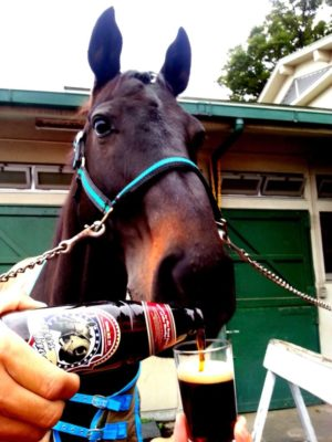 livejupiter 1605523949 39401 300x400 - 【疑問】 競走馬って何食べてるの?普通の馬みたいに人参食べてるの?