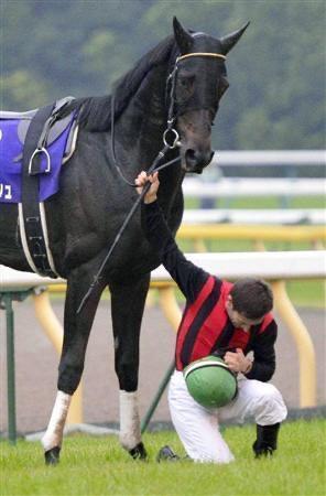 mnewsplus 1604224171 7201 - 【天皇賞・秋】 アーモンドアイ、史上初の芝GⅠ8勝…ルメール騎手「(涙を浮かべ)信じられない。日本一になりました」
