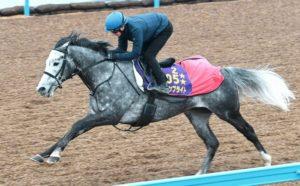 mnewsplus 1605940681 101 300x186 - 【競走馬】ウインブライトが次戦の香港Cで引退へ