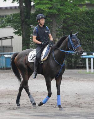 keiba 1611793367 102 300x381 - 【競馬】コパノキッキング、サウジ鞍上は外国人騎手で調整 Dr.コパ「菜七子ちゃんも考えたんだけど…」