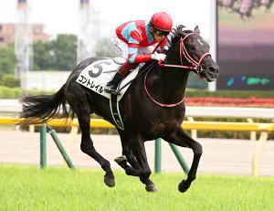 keiba 1612505064 101 - 【競馬】コントレイル、+40kg 矢作調教師「風格が出てきた感じ」