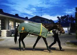 keiba 1614165915 103 - 【競馬】キセキはデムーロと久々のコンビで金鯱賞へ。
