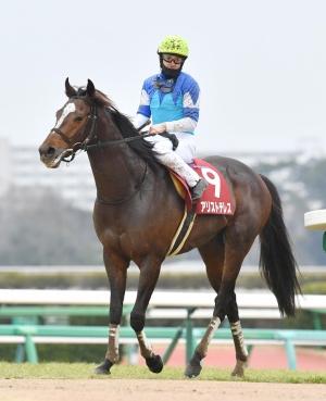 keiba 1615806664 101 - 【競馬】アリストテレスの助手「今まで担当してきた馬の中でもスタミナは規格外」