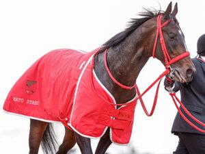 keiba 1615955994 102 300x225 - 【競馬】グラティアスは松山弘平騎手と新コンビで皐月賞へ、2戦2勝の京成杯覇者