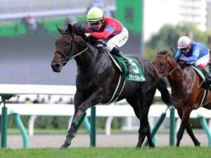 keiba 1615961015 101 300x225 - 【競馬】ブラックホールさん、競走能力喪失