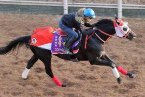 keiba 1616048677 101 300x200 - 【競馬】コントレイル、4F自己ベスト50秒1!福永「パワーついてきた」