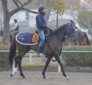 keiba 1616478731 101 - 【競馬】アサマノイタズラは引き続き嶋田で皐月賞へ
