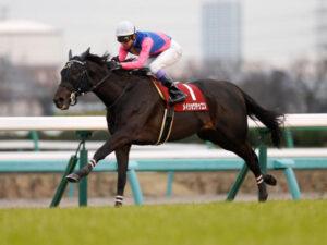 livejupiter 1616385379 101 300x225 - 【競馬】重賞2勝馬メイショウテッコンが21日付で引退