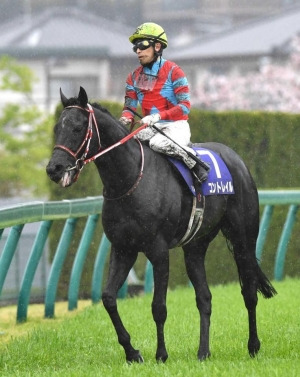 keiba 1617585126 101 - 【大阪杯】矢作調教師白旗「コントレイルの仕上がりは完璧だった。勝ち馬が強かった」
