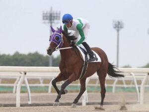 livejupiter 1627998108 101 300x225 - 【競馬】キセキノテイオー、8月5日門別1R出走へ