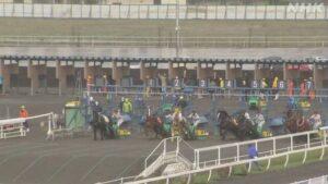 mnewsplus 1629194149 101 300x169 - 【競馬】「ばんえい競馬」出走馬の顔蹴った疑い 騎手ら5人を書類送検 動物愛護法違反