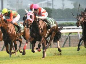 mnewsplus 1629614731 101 300x225 - 【競馬】ヨカヨカが熊本産馬初のJRA重賞制覇!北九州記念