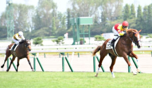 mnewsplus 1630223659 101 300x173 - 【競馬】新種牡馬ビッグアーサー産駒トウシンマカオが快勝