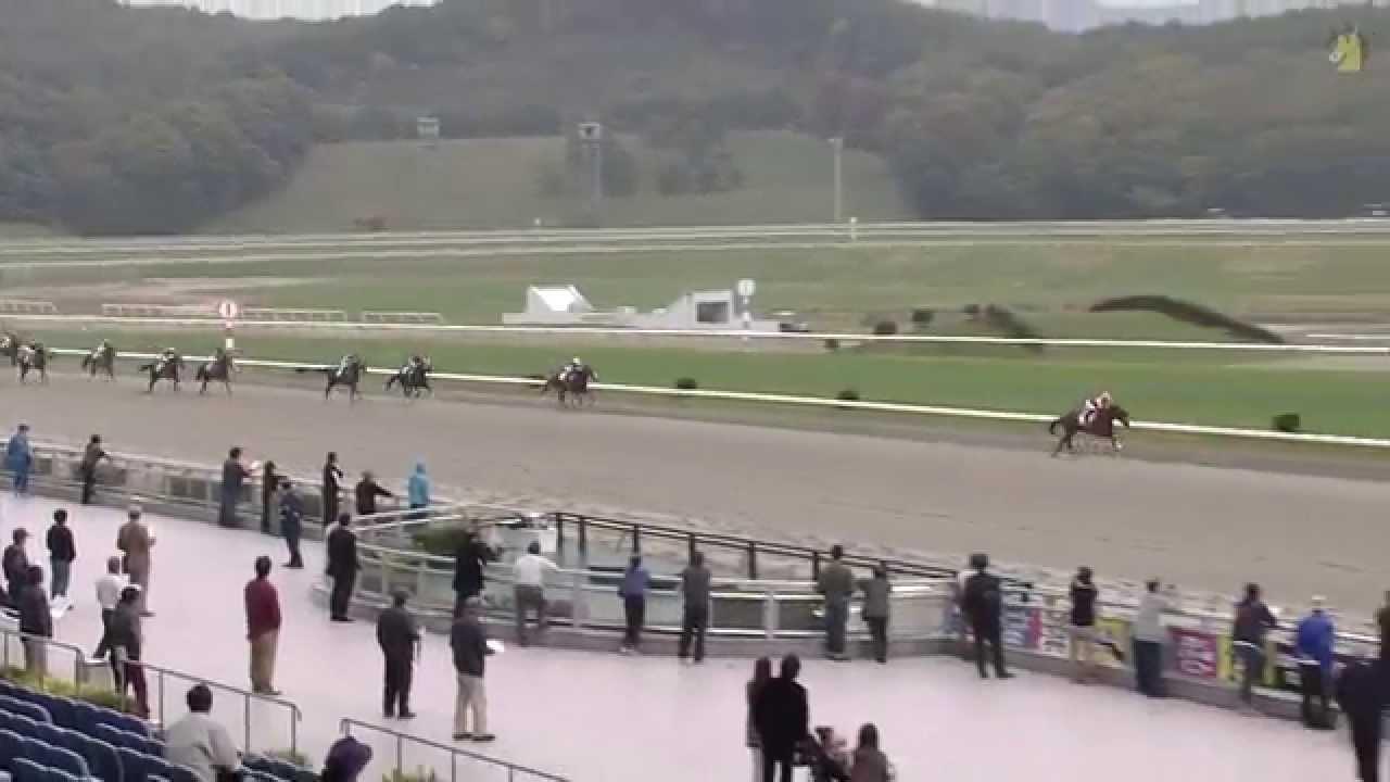 若駒賞(盛岡・重賞) 2番手追走ロールボヌール4角先頭・直線ぶっ千切って2.5秒差圧勝!