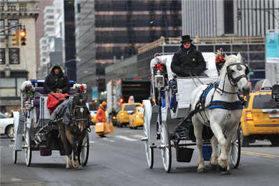 4581698f - 【米国】NYの名物馬車、「動物虐待」で消える?…新市長が廃止公約