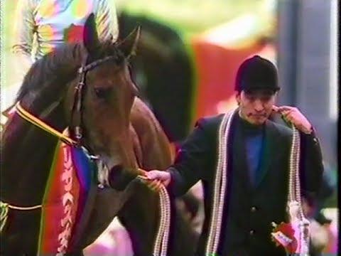 横山典弘騎手「自分がホクトベガの運命を変えてしまった」