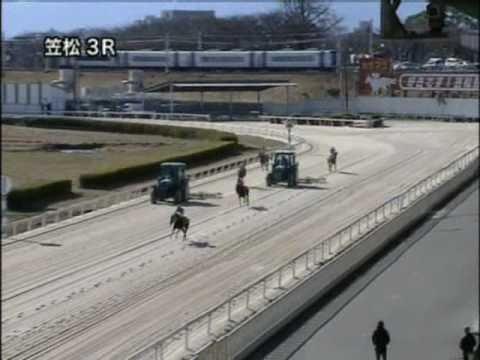 大井競馬で珍事!枠内駐立不良で競走除外になった馬がレース中のコース乱入 レースに影響無し