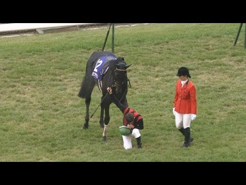 M・デムーロ、ルメールが騎手免許試験に合格!史上初のJRA所属外国人騎手に!