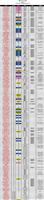 f4509742 - 2013年 国内種牡馬の種付け料