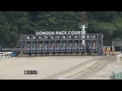 keiba 1415272442 5001 400x300 - 園田競馬でフライング疑惑!しかし運営から説明もないままレース確定!