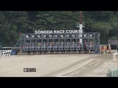 園田競馬でフライング疑惑!しかし運営から説明もないままレース確定!