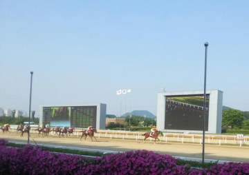 エスメラルディーナが韓国で完勝