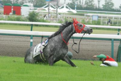 keiba 1436171738 16204 400x268 - 7月6日 大井6Rで騎手5人が落馬事故
