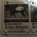プリンセスナナコの一口募集の謳い文句が「藤田菜七子に騎乗依頼済!」