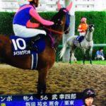メイショウマンボが阪神牝馬Sを最後に現役引退、繁殖入り