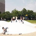 「踏み切ってジャンプ」阪神競馬場公認となる