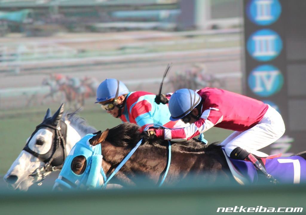 keiba 1517271542 3401 - オジュウチョウサンがJRAヒーロー列伝ポスターに!82枚目で初の障害馬