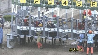 keiba 1561465640 102 - 【岩手競馬】ゲートを潜ろうと暴れる馬の頭に係員が足蹴り